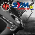 Roller Dr.Pulley 18X14 SYM GTS 125